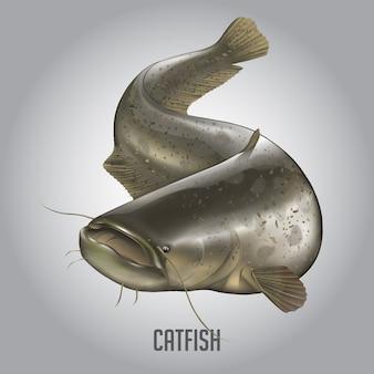 Векторная иллюстрация catfish