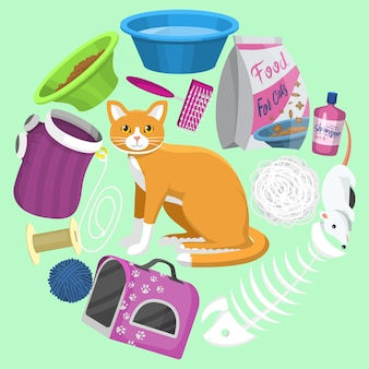 Cats accessories. animal supplies, food and toys for cats, toilet, carrier and equipment for grooming and pet care all located around a cute ginger cat.