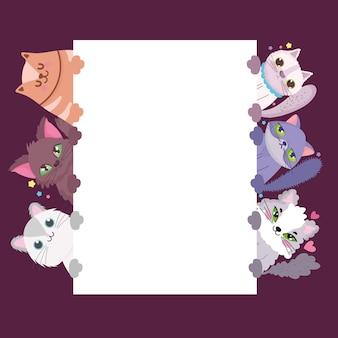 Кошки очаровательны милые животные домашние кошачьи с баннером векторные иллюстрации