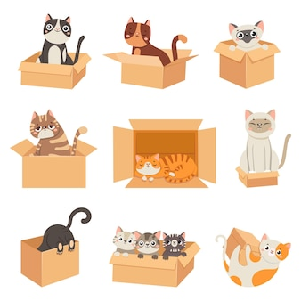 Cats in boxes. cute stickers with cat sitting, sleeping and playing in cardboard box. funny hiding kittens. adopt homeless pet, vector set. illustration animal kitten in box, feline cat pet