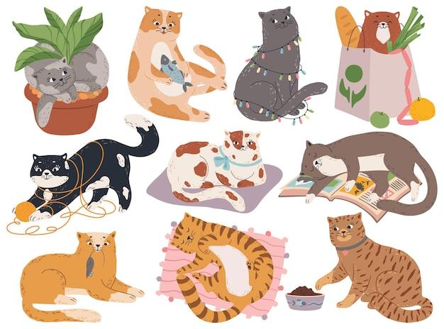 고양이 식물 냄비 세트에 앉아 침대에서 자고 원사 또는 장난감을 가지고 노는 귀여운 푹신한 키티