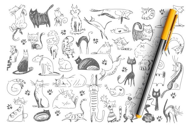 猫の落書きセット。手描きの幼稚なパターンのコレクション飼いならされた動物子猫子猫ペット