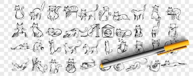 猫の落書きセット。手描きの鉛筆スケッチのコレクションは、ボックスやバスケットに隠れているボールで遊んでストレッチを眠っている愛らしいペットの子猫の子猫のテンプレートパターンです。イラスト国内の動物。
