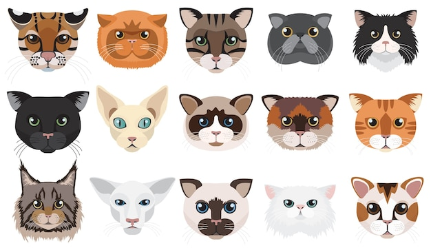 Cats heads faces emotions set