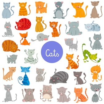 Cats and kittens pet animal characters large set