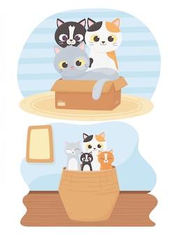 Кошки радуют меня, милые котята в коробке и плетеная корзинка мультфильма