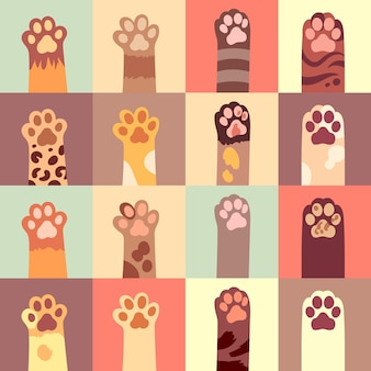 Cats paws set in flat style