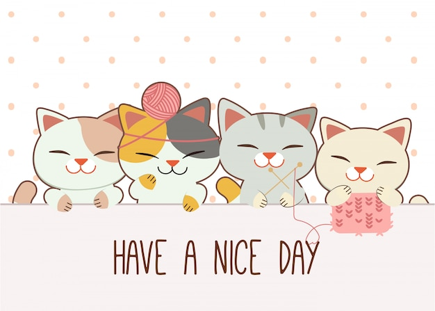 Кошки играют с поздравительной открыткой