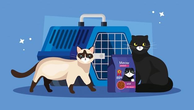 가방과 애완 동물 운반 상자에 음식 고양이