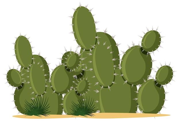 白のサボテン植物漫画スタイル