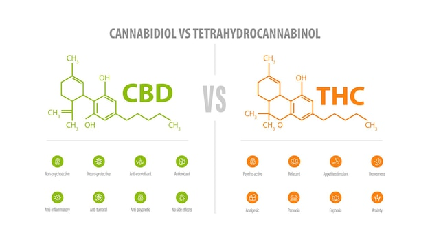 Cbd vs thc, list of differences with icons and chemical formulas