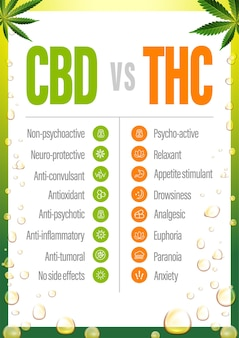 Cbd vs thc, poster with comparison cbd and thc