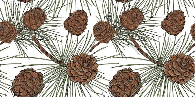円錐形の植物のシームレスなパターン、白い背景を持つ杉の枝