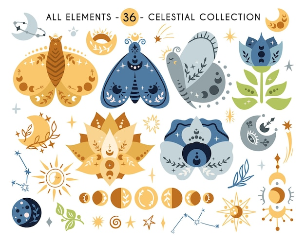 Celestial butterfly or moth