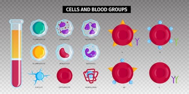 투명 표면에 고립 된 세포와 혈액 세트