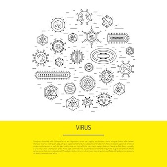 Cells of viruses and bacteria