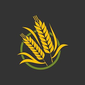 穀物の耳のスパイク、小麦または大麦と米キビの茎ベクトルベーカリーアイコン。農業のパンと穀物の食品の兆候、小麦の小穂または大麦のキビの束、天然および有機のバイオ製品のエンブレム