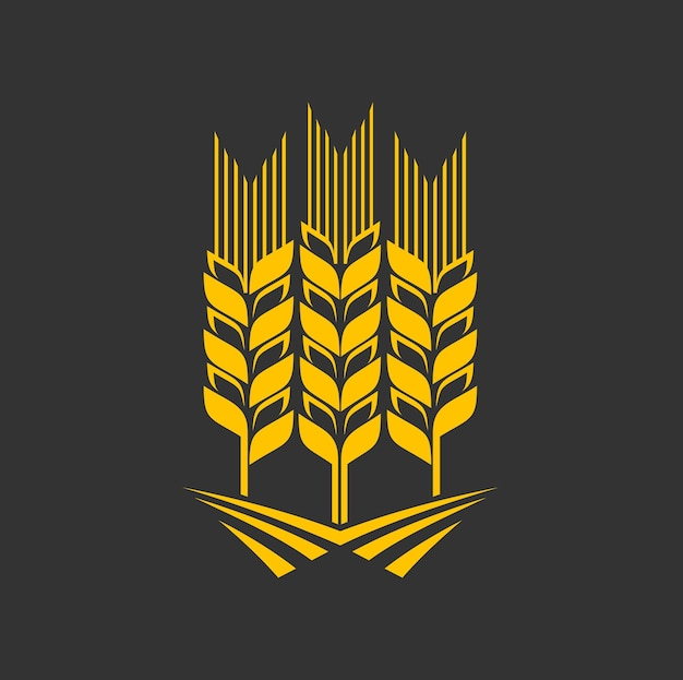 Cereal ear, wheat, rye or barley graphic icon Premium Vector