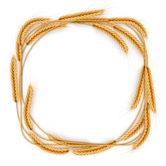 Венок пшеницы хлопьев, изолированный на белизне. урожай кадр шаблон. объект сельскохозяйственной продукции.