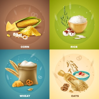 Cereals illustration set