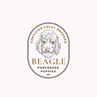 Certified dog breeder frame badge or logo template hand drawn beagle puppy face sketch with retro ty...
