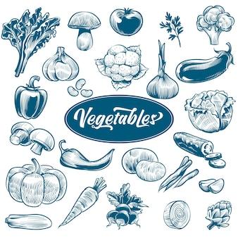 野菜のチョーク画。テキスト付きのさまざまなヴィンテージ手描き野菜、有機ニンジンブロッコリーナス、キャベツとキノコ、農産物。スケッチスタイルベクトル分離セット