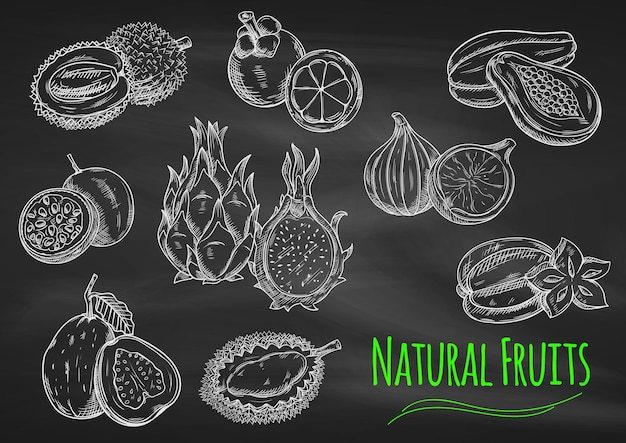 Chalk sketches of exotic fruits on blackboard