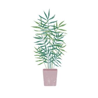 植木鉢フラットイラストのチャメドレア