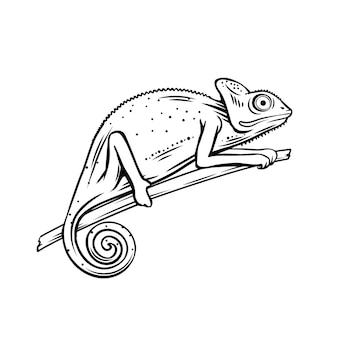 Хамелеон значок. наброски знак животного хамелеон для зоопарка.