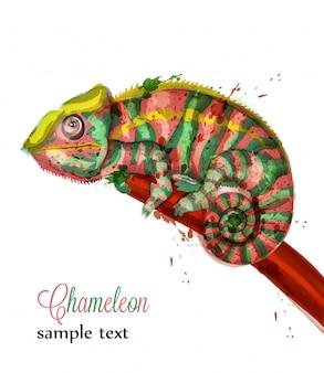 カメレオンの水彩画