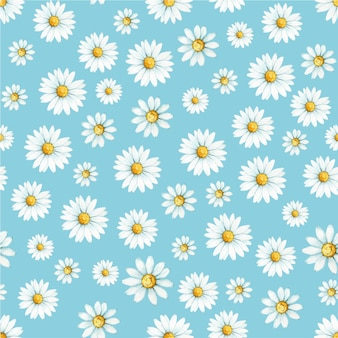 Chamomile, a flower drawn by hand in watercolor.