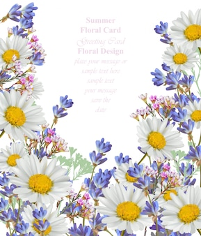 Chamomile and lavender summer card vector background illustration