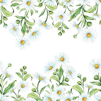 카모마일, 완벽 한 패턴입니다. 꽃과 잎, 수채화 그리기.