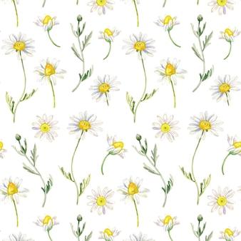 水彩風の花の壁紙のカモミールシームレスパターン