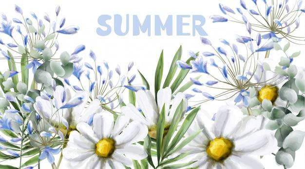 Chamomile summer card watercolor