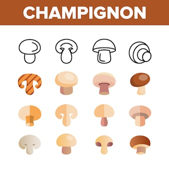 Champignon, edible mushroom