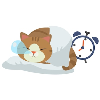 The character of cat sleeping on white
