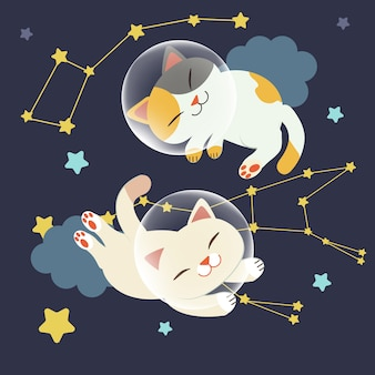 The character of cute cat float in space. the cat float in space with group of stars