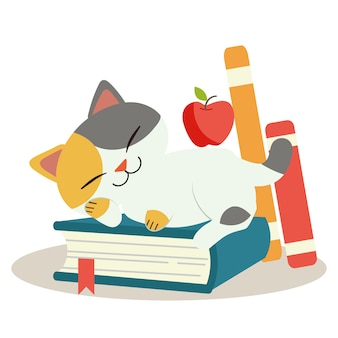 The character of cute cat sleep on the book