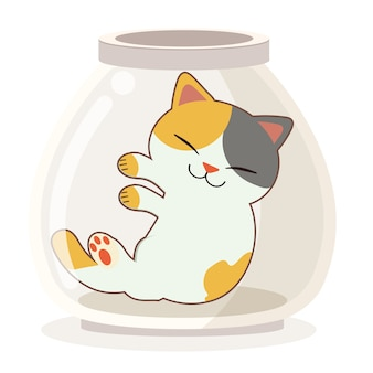 The character of cute cat sleepping in the transparent jar.