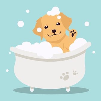 The character of cute golden retriever in the tube with flat vector style