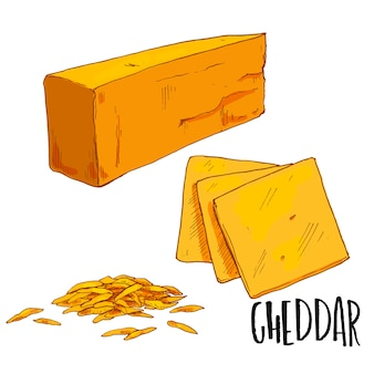 Cheddar cheese illustration
