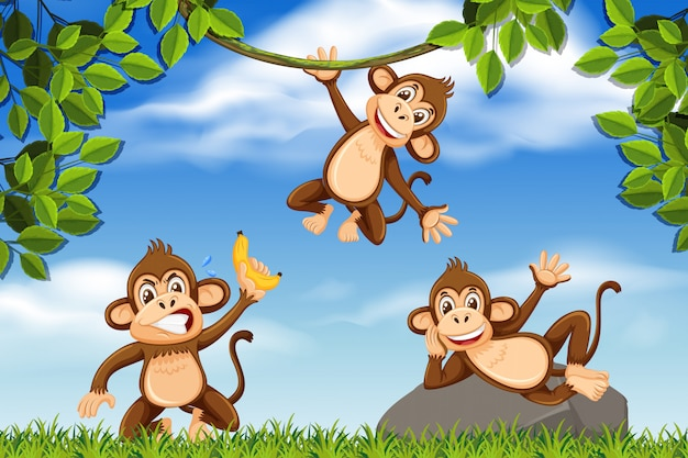 Cheeky monkeys in jungle scene