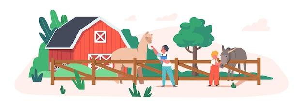 農場や屋外のコンタクト動物園公園でかわいいラマとロバに餌をやる陽気な子供たち。動物に食べ物を与える小さな男の子と女の子。子供のキャラクターはペッティングパークで時間を過ごします。漫画のベクトル図