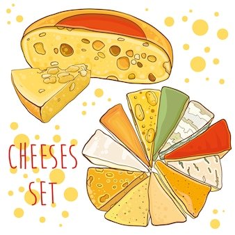 Cheese collection. bright illustration with cheeses. set for .
