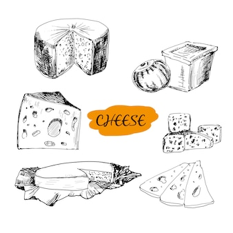 Cheese  in engraving style
