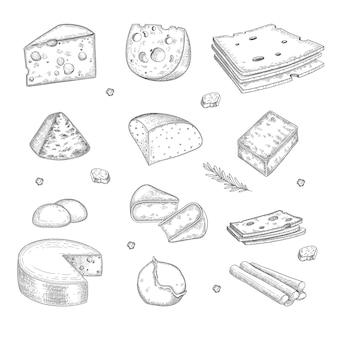 Рисованной сыр. молочная ферма вкусный органический здоровый продукт изысканной кухни нарезанный сыр векторная коллекция. иллюстрация сырный ингредиент, вкусный молочный продукт, здоровый завтрак