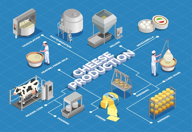 Cheese production isometric flowchart illustrated process from milk yield and pasteurization to fermenting pressing and ripening