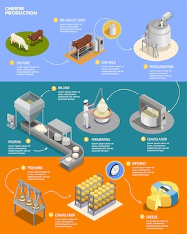 Cheese production isometric infographics layout with eleven phases of cheese preparation from raw milk