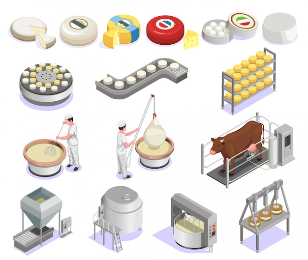Cheese production isometric set with factory equipment and large assortment of finished products isolated
